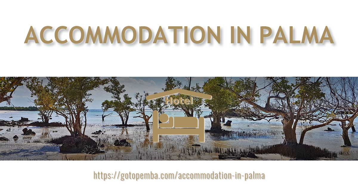 ACCOMMODATION IN PALMA - THUMBNAIL - GOTOPALMA - by DESIGN GRÁFICO - ©2020 GOTOPEMBA